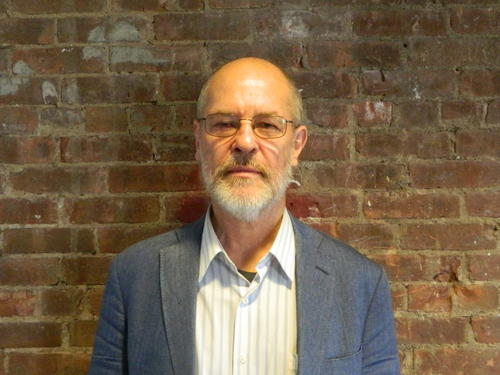 Professor David Ludden